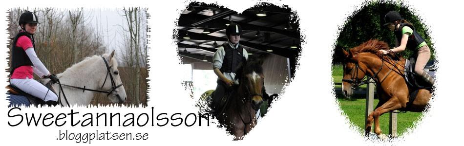Anna & Dot Com - Hästblogg